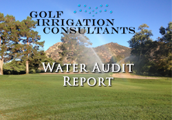 Water Audit